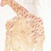 Giraffe_card