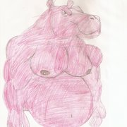Hippo_card