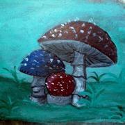 Shrooms_card