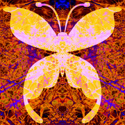 Butterflywingstoosmall_card
