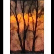 Nd_sunset_tree_oil_bw-frmd_card