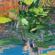 Waterlilies_card