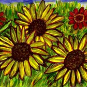 Flowers_looking_for_the_sun_card