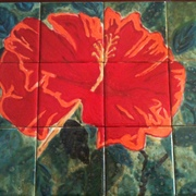 Hibiscus_tile_card