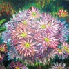 Daisies_gone_wild_-_a_-_1-8-12__thumb