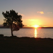 Sunset_mission_bay_taupo_card