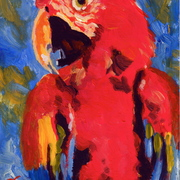B5_red_parrot_acrylic_on_board_5