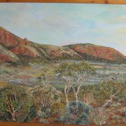 Gawler_ranges_south_australia__old_paney_scrubby_paek