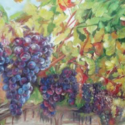 Grape-alexandr-az_card