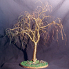 Winter_willow_100_dpi_large_thumb