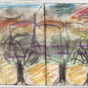 Three_trees_in_the_square_cm