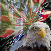 American_pride_card