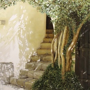 Stairs_in_the_sun_at_bran_25x35_card