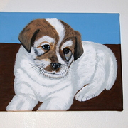 Puppydone2_card