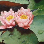 Lotus_flowers_card