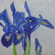 Irises_edit_1_card