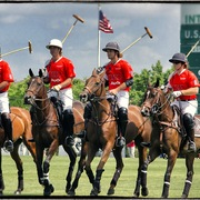 Audipolo_card