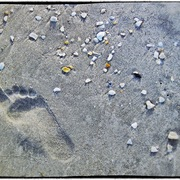 Footprint_card