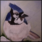 Bluejaybybarbaraframed_card