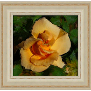 Our_yellow_rose-f_card