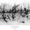 _the_wound__-_r3600__1220mm_x_510mm_thumb