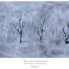 _the_rain_chronicals__-_r3600__1220mm_x_510mm_thumb