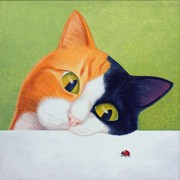 Cat_with_ladybird_copy_card