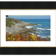 Pacific_grove_spring__2-f_card