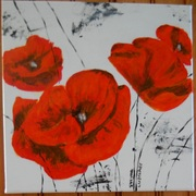 Snow_poppies_004_card