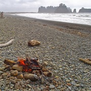 1114bonfire_on_rialto_beach__olympic_national_park__wa_card