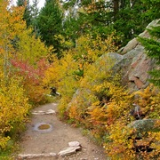 Trail_from_fern_lake_trailhead_to_pool__rocky_mountain_np__co_card