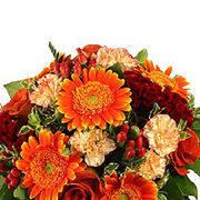 Delhionlineflorists_m_card