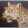 Jaguar_thumb