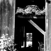 Barn_door_card