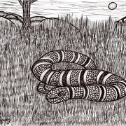 Coral_snake_in_the_grass_card