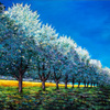 Orchard_row_thumb