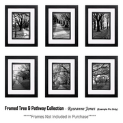 Framed-collectiontree_pathway_card
