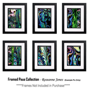 Framed-paua-collection_card