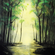 Light_thru_a_forest_card
