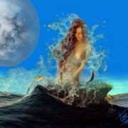 Sirena_wash_card