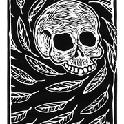 Skull_and_feathers_krauzyk©2008_card