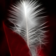 Neon_red_feather_card
