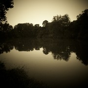 Pond_in_sepia_spotlight_card