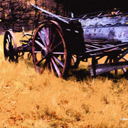 Arrowtown_wagon_card