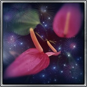 Spaceflower_card