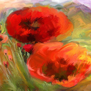 Poppies-alexandr_card