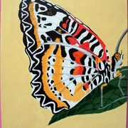 Butterfly_card