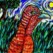 Wild_turkey_in_a_field_card