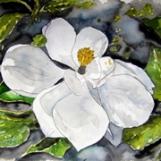 Magnolia_flower_painting_small_card