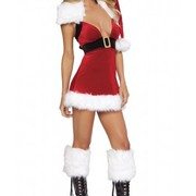 Sexy_cutie_mini_dress_adult_women_christmas_costume_card